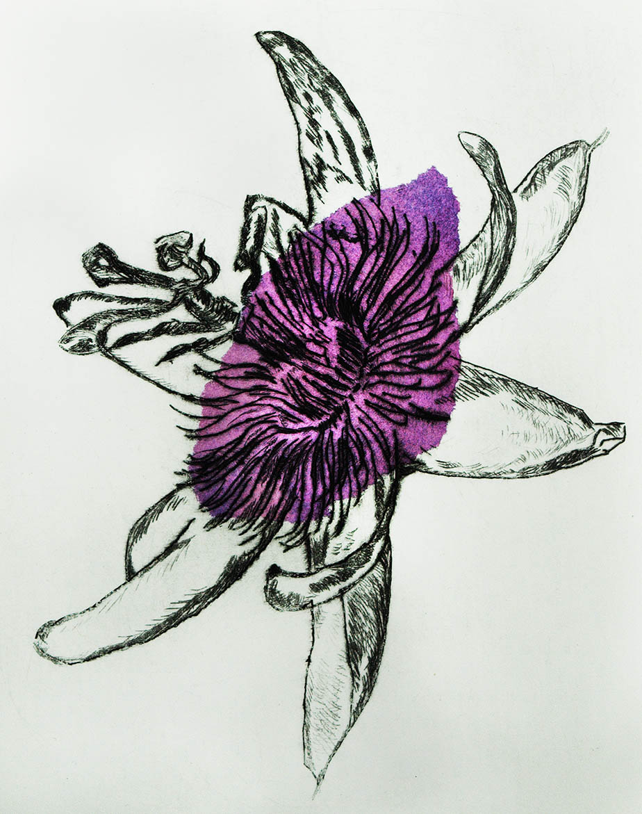 Drypoint print of passionflower