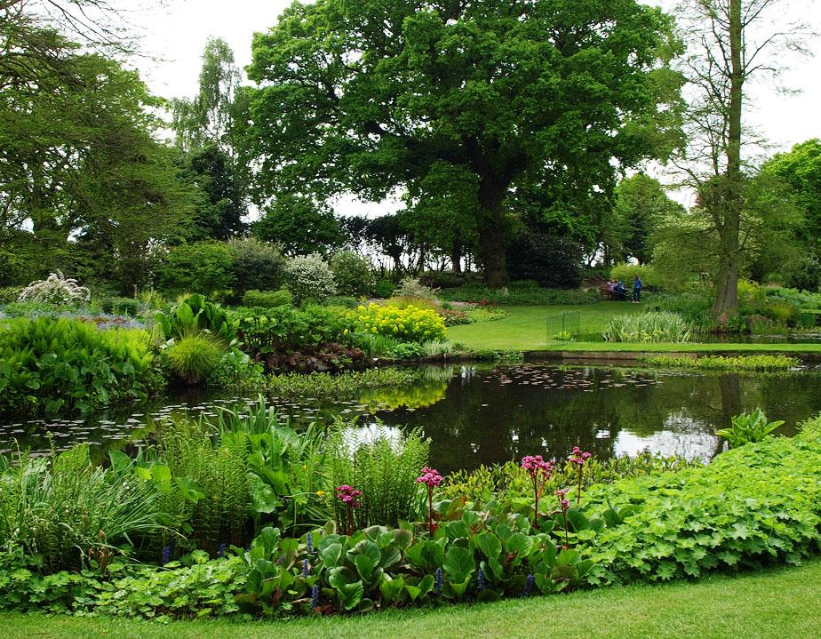 A Favourite Garden