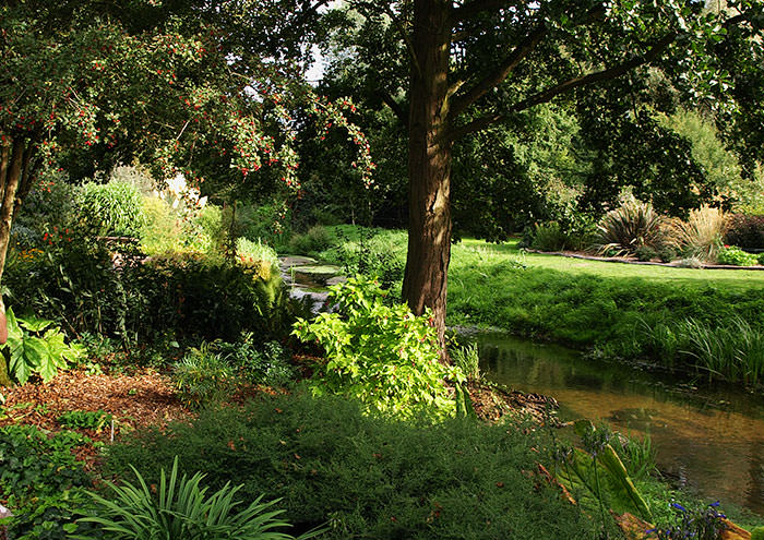 Riverbank at Fullers Mill Garden