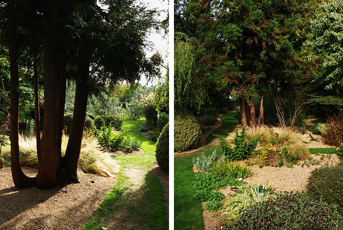 Trees in Fullers Mill Garden